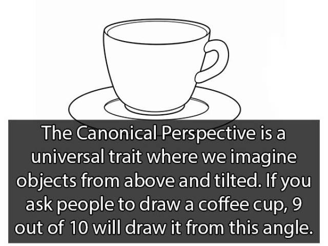 Cup - The Canonical Pers pective is a universal trait where we imagine objects from above and tilted. If you ask people to draw a coffee cup, 9 out of 10 will draw it from this angle.