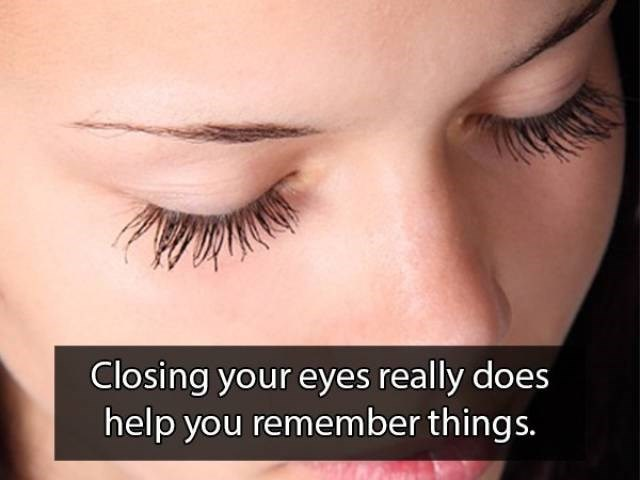 Eyelash - Closing your eyes really does help you remember things.