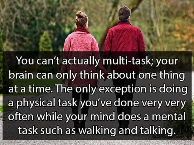 Text - You can't actually multi-task; your brain can only think about one thing at a time. The only exception is doing a physical task you've done very very often while your mind does a mental task such as walking and talking.