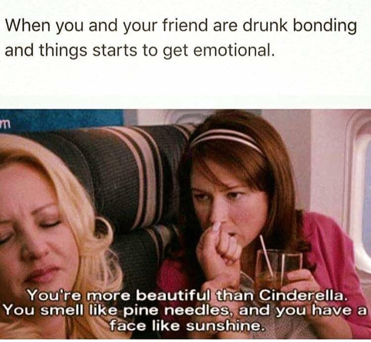 basic meme - Face - When you and your friend are drunk bonding and things starts to get emotional. You're more beautiful than Cinderella. You smell like pine needles, and you have a face like sunshine