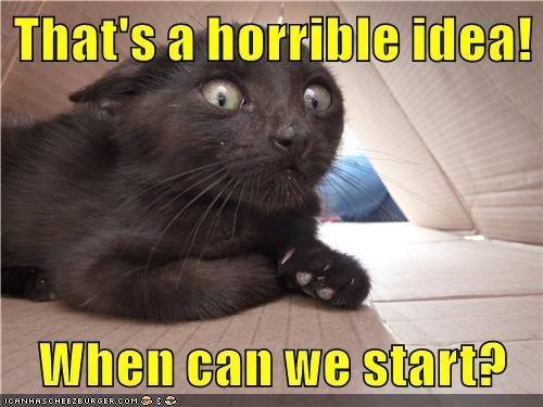 Cat - That's a horrible idea! When can we start? ICANHASCHEE2EURGER coM