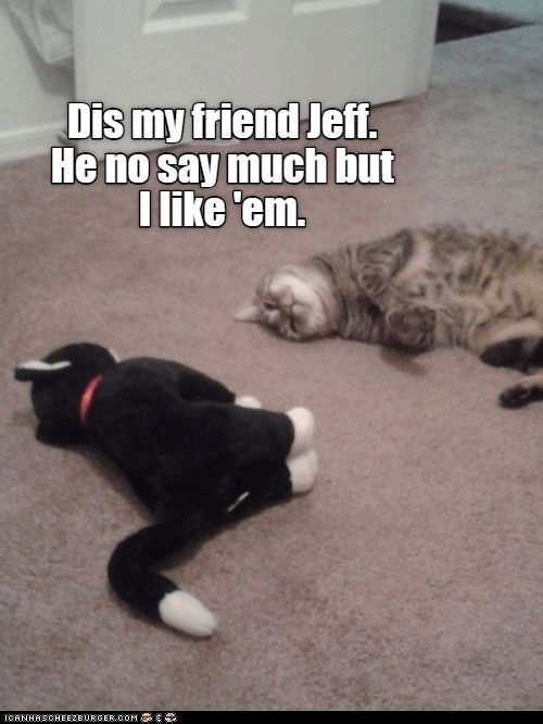 Cat - Dis my friend Jef. He no say much but I like 'em. ICANHASCHEE2EORGER cOM