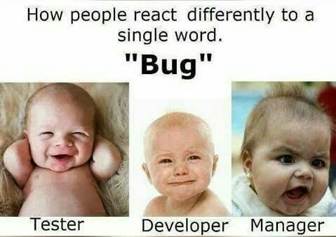 "Child - How people react differently to a single word. ""Bug"" Tester Developer Manager"