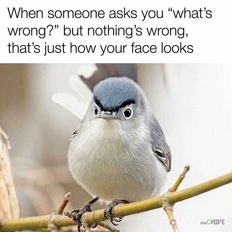 meme about having a constant facial expression that people always ask whats wrong