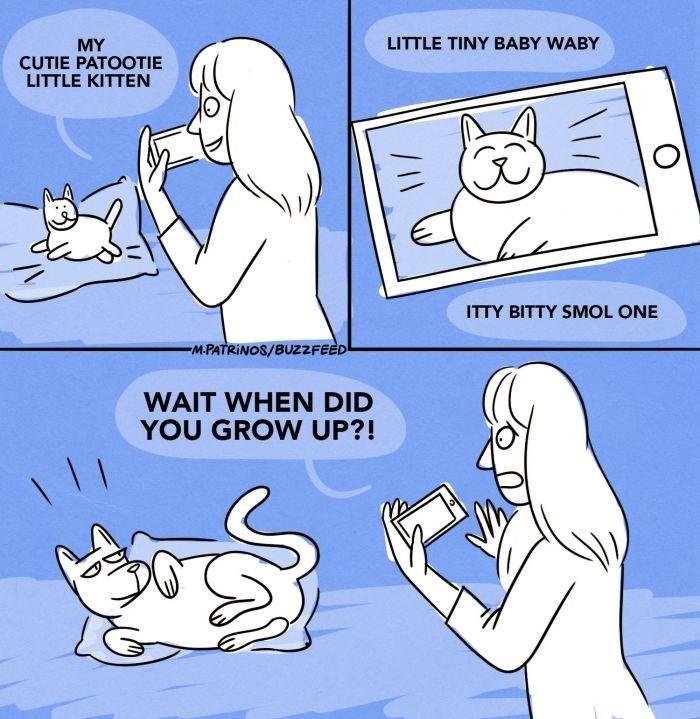 Cartoon - LITTLE TINY BABY WABY MY CUTIE PATOOTIE LITTLE KITTEN ITTY BITTY SMOL ONE MPATRINOS/BUZ2FEED WAIT WHEN DID YOU GROW UP?!