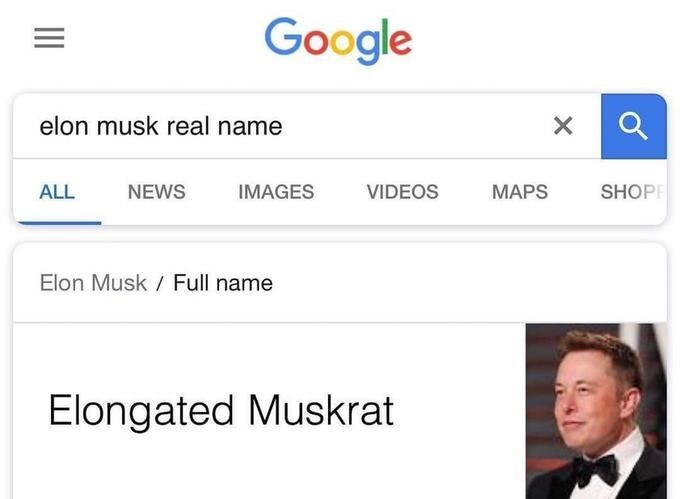 celeb real name - Text - Google elon musk real name X VIDEOS MAPS ALL NEWS IMAGES SHOP Elon Musk Full name Elongated Muskrat