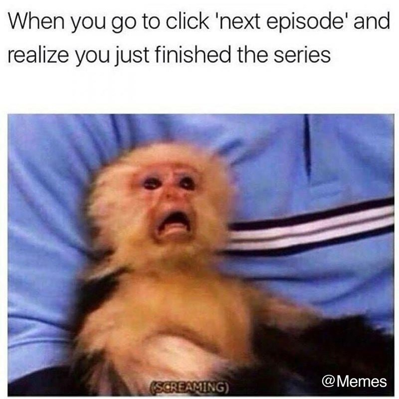 New World monkey - When you go to click 'next episode' and realize you just finished the series @Memes SCREAMING