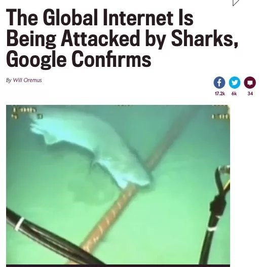 "Headline that reads, ""The Global Internet is Being Attacked by Sharks, Google Confirms"""