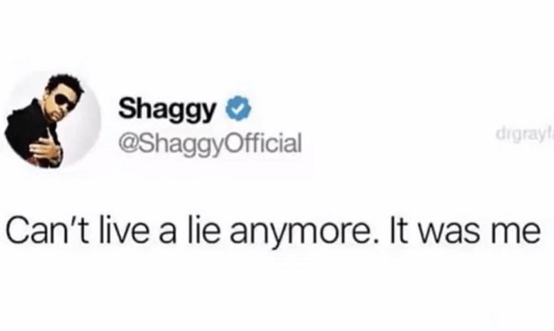 music meme - Text - Shaggy @ShaggyOfficial digray Can't live a lie anymore. It was me