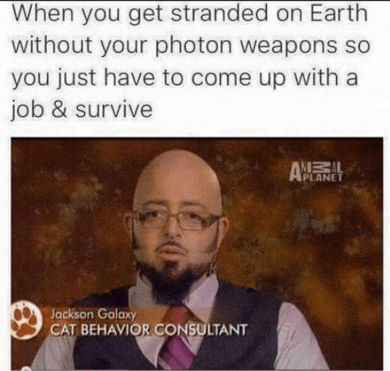 Text - When you get stranded on Earth without your photon weapons so you just have to come up with a job & survive AN AL PLANET Jackson Galaxy CAT BEHAVIOR CONSULTANT