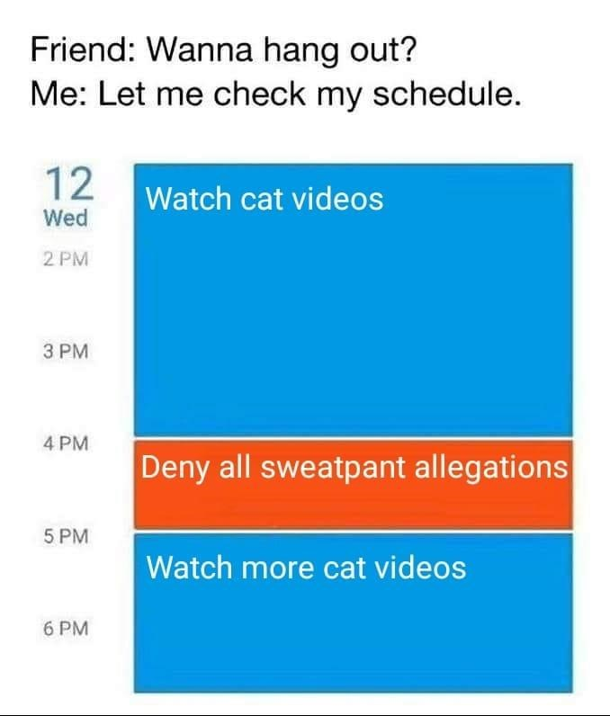 Text - Friend: Wanna hang out? Me: Let me check my schedule 12 Watch cat videos Wed 2 PM 3 PM 4 PM Deny all sweatpant allegations 5 PM Watch more cat videos 6 PM