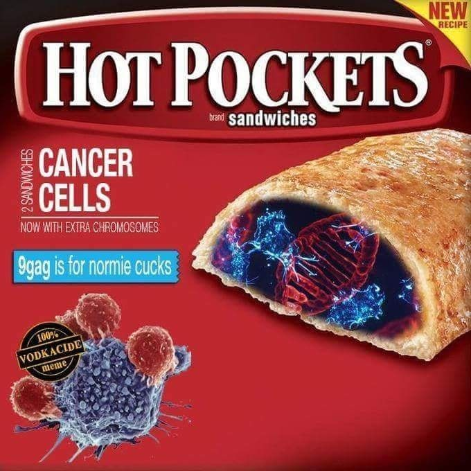 Food - NEW НОT РОСКЕTS RECIPE OCK bean sandwiches CANCER CELLS NOW WITH EXTRA CHROMOSOMES 9gag is for normie cucks 100% VODKACIDE meme 2 SANDWICHES