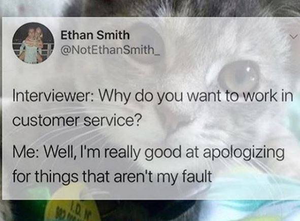 "Tweet that reads, ""Interviewer: Why do you want to work in customer service? Me: Well, I'm really good at apologizing for things that aren't my fault"""