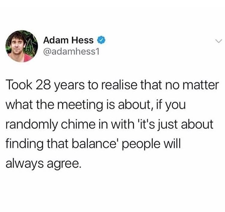 Text - Adam Hess @adamhess1 Took 28 years to realise that no matter what the meeting is about, if you randomly chime in with 'it's just about finding that balance' people will always agree.