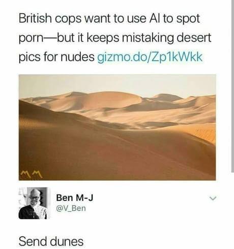 meme - Desert - British cops want to use Al to spot porn-but it keeps mistaking desert pics for nudes gizmo.do/Zp1kWkk Ben M-J @V Ben Send dunes