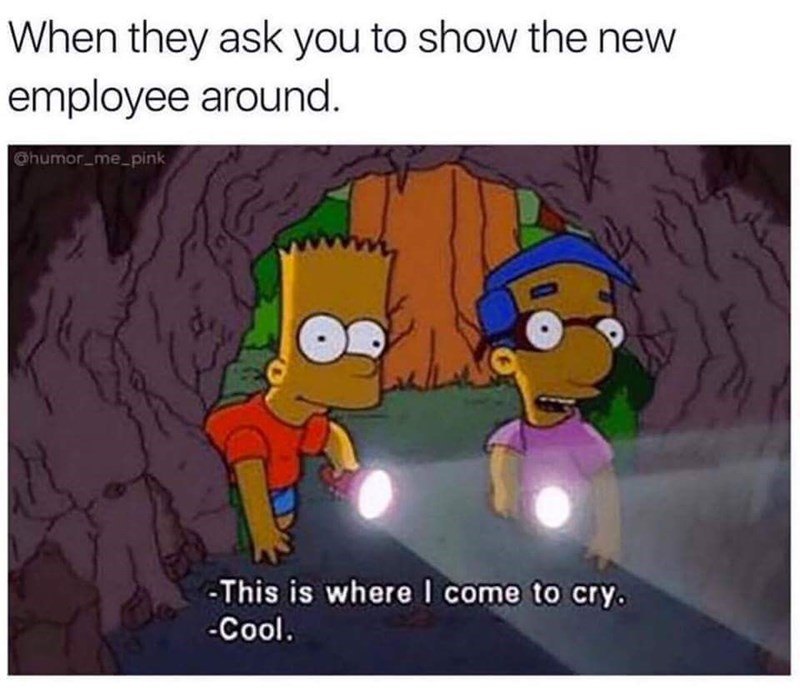 "Caption reads, ""When they ask you to show the new employee around"" above a pic of Bart Simpson and Milhouse, where Bart says, ""This is where I come to cry"""