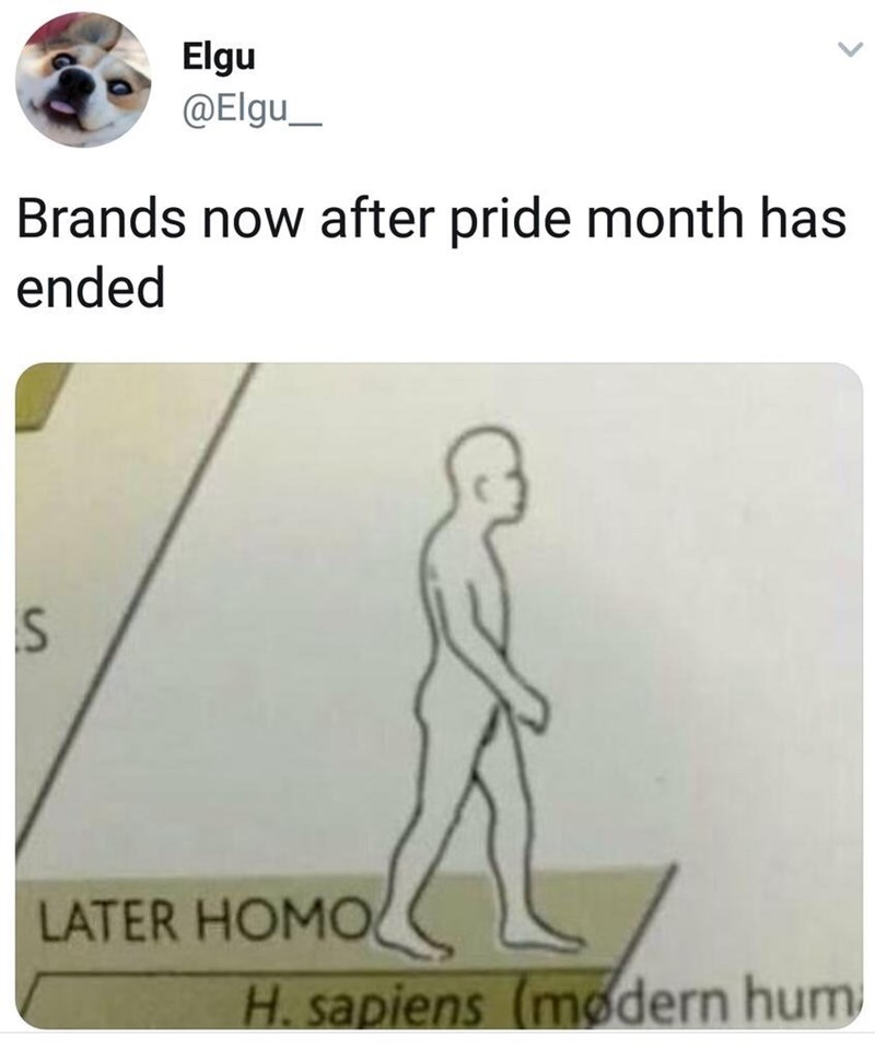 "Tweet that reads, ""Brands now after Pride month has ended"" above a picture from a biology textbook that features a human walking with text that reads, ""Later homo"""