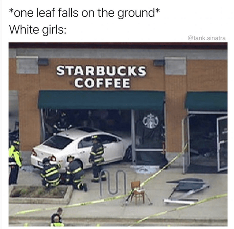 "Caption reads, ""One leaf falls on the ground; White girls:..."" above a pic of a car that's crashed into a Starbucks"