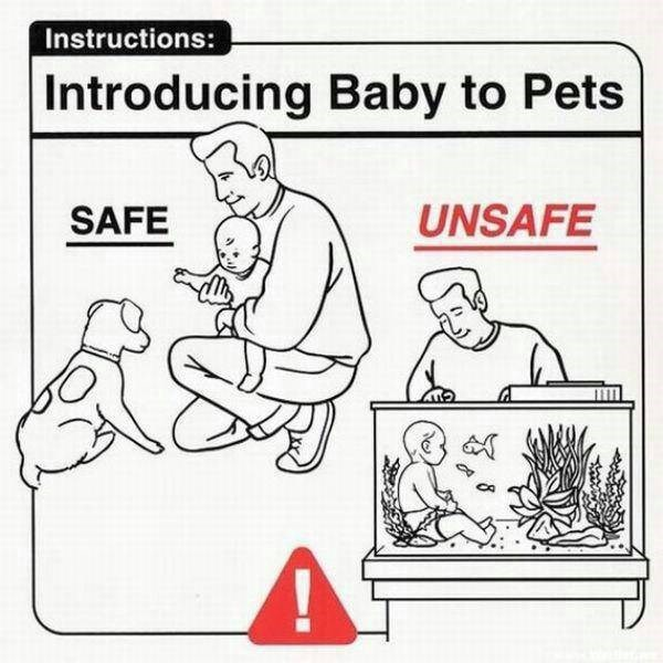 Cartoon - Instructions: Introducing Baby to Pets UNSAFE SAFE
