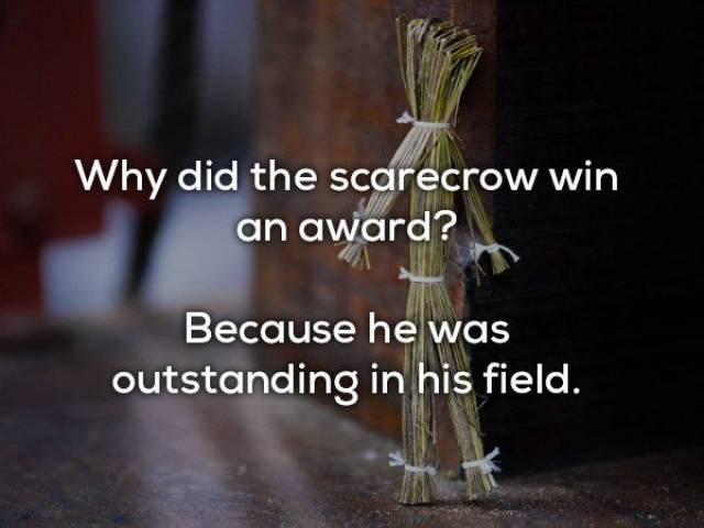 Text - Why did the scarecrow win an award? Because he was outstanding in his field.