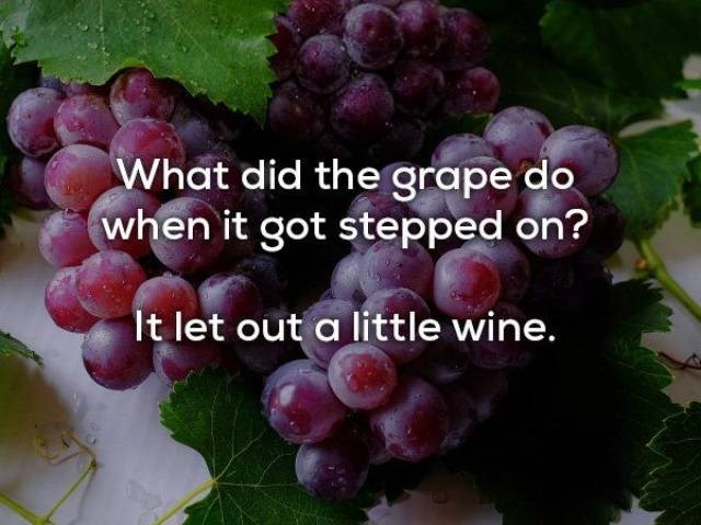 Grape - What did the grape do when it got stepped on? It let out a little wine.