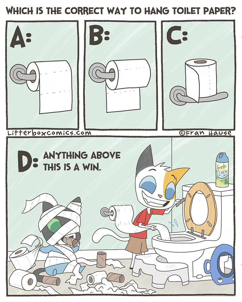 Cartoon - WHICH IS THE CORRECT WAY TO HANG TOILET PAPER? A: B: C: LitterboxComics.com OFran HaUse DE ANYTHING ABOVE THIS IS A WIN. fresh itter P