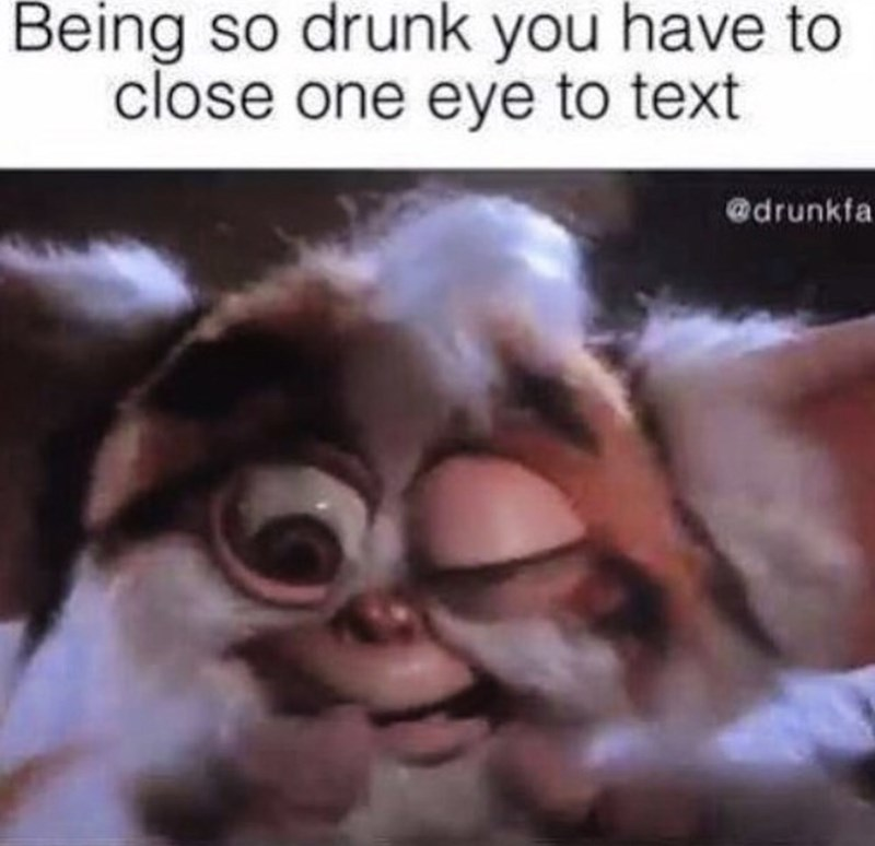 "Caption reads, ""Being so drunk you have to close one eye to text"" above a pic of a Furby with one eye closed"