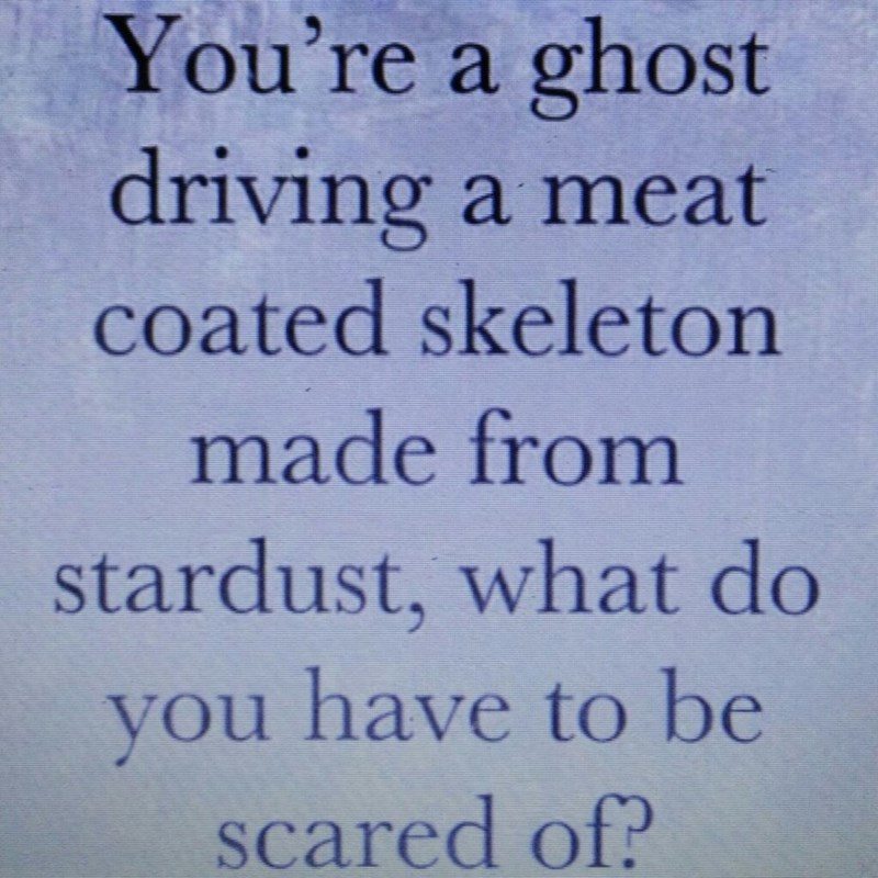 """Text that reads, """"You're a ghost driving a meat-coated skeleton made from stardust, what do you have to be scared of?"""""""
