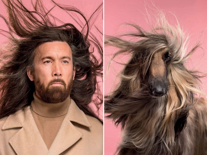 dogs matching owner - Hair