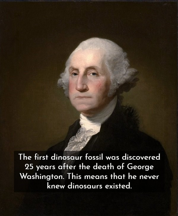 Portrait - The first dinosaur fossil was discovered 25 years after the death of George Washington. This means that he never knew dinosaurs existed.