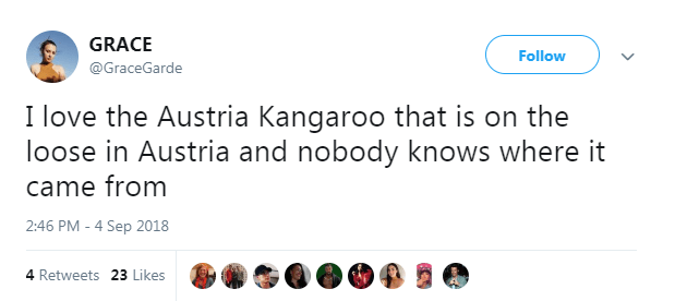 Text - GRACE Follow @GraceGarde I love the Austria Kangaroo that is on the loose in Austria and nobody knows where it came from 2:46 PM - 4 Sep 2018 4 Retweets 23 Likes