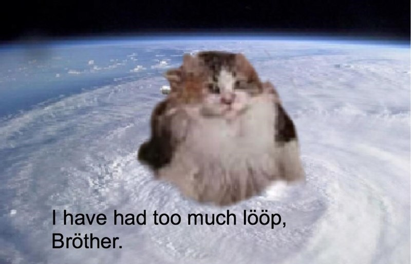 Whiskers - T have had too much lööp, Bröther.