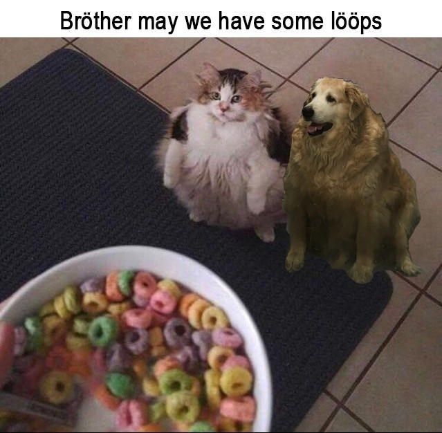 Dog - Bröther may we have some lööps