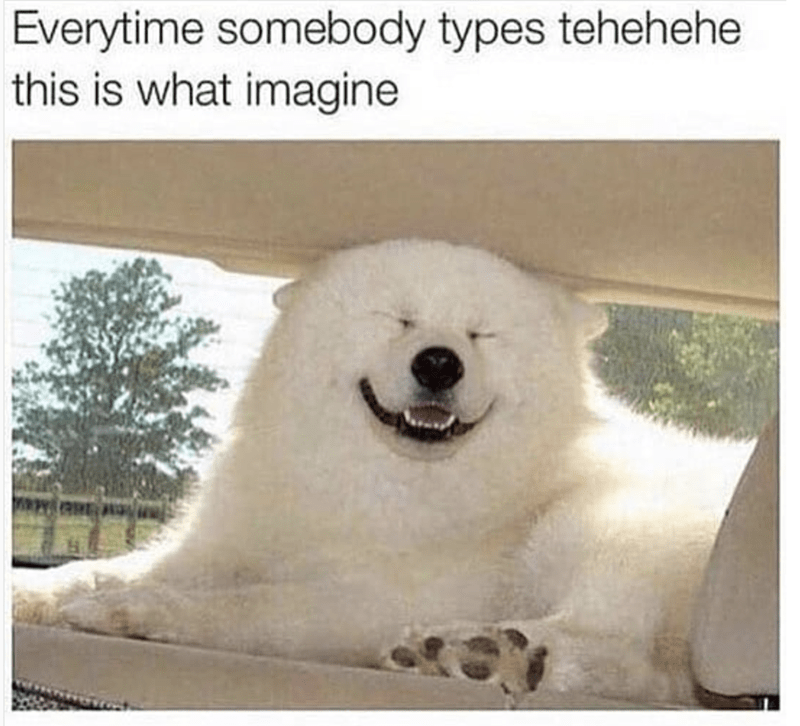meme - Mammal - Everytime somebody types tehehehe this is what imagine
