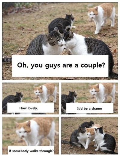 Cat - Oh, you guys are a couple? How lovely. Itd be a shame If somebody walks through?