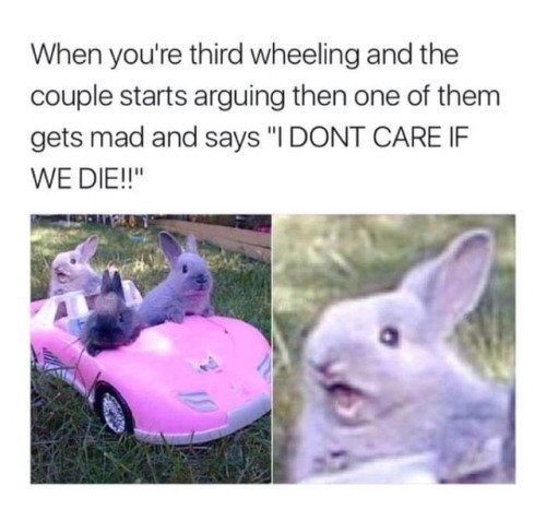 """Organism - When you're third wheeling and the couple starts arguing then one of them gets mad and says """"I DONT CARE IF WE DIE!!"""""""