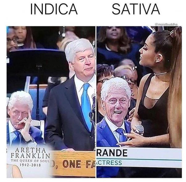 Facial expression - INDICA SATIVA @moistbuddha ARETHA RANDE ONE FACTRESS FRANKLIN THE QUEEN OF SOUL 1942-2018