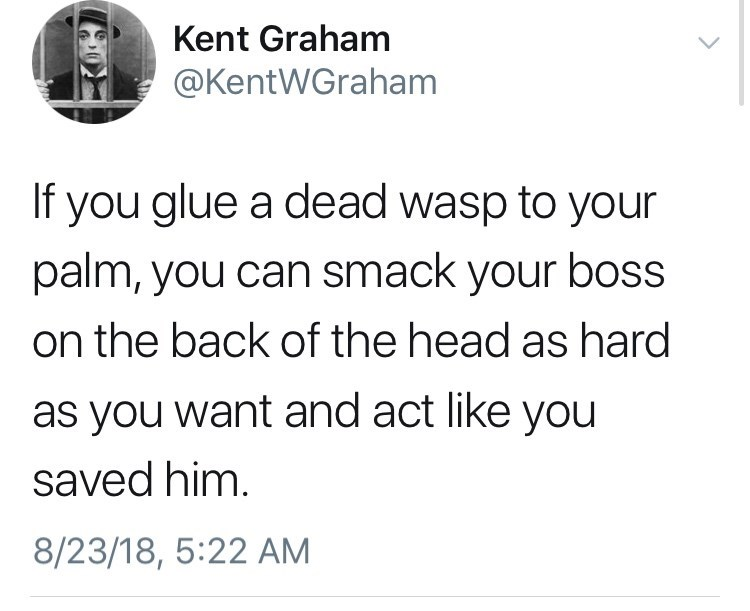 Text - Kent Graham @KentWGraham If you glue a dead wasp to your palm, you can smack your boss on the back of the head as hard as you want and act like you saved him. 8/23/18, 5:22 AM