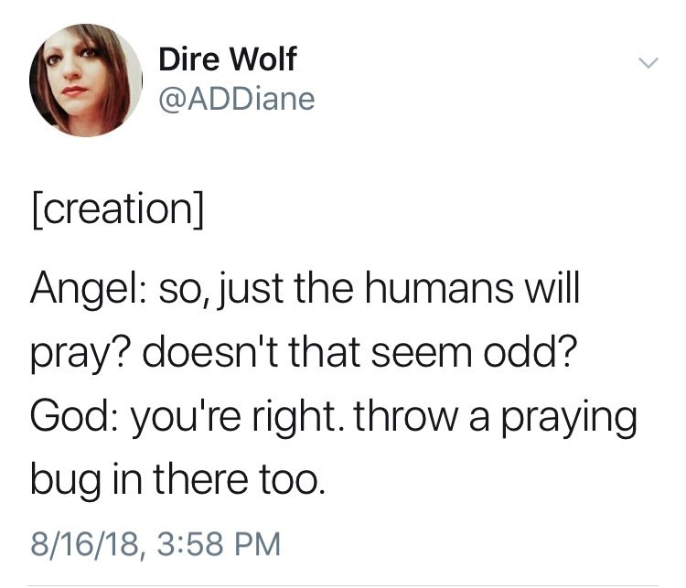 Text - Dire Wolf @ADDiane [creation] Angel: so, just the humans will pray? doesn't that seem odd? God: you're right. throw a praying bug in there too. 8/16/18, 3:58 PM