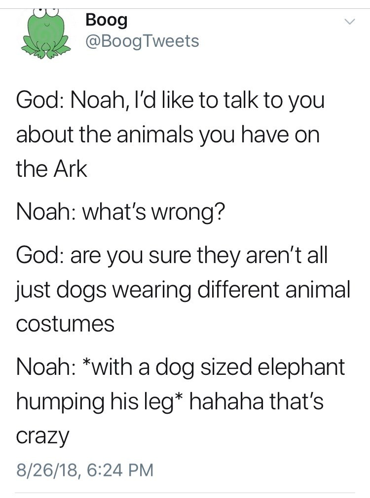Text - Boog @BoogTweets God: Noah, l'd like to talk to you about the animals you have on the Ark Noah: what's wrong? God: are you sure they aren't all just dogs wearing different animal costumes Noah: *with a dog sized elephant humping his leg* hahaha that's crazy 8/26/18, 6:24 PM
