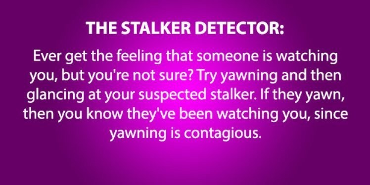 Text - THE STALKER DETECTOR: Ever get the feeling that someone is watching you, but you're not sure? Try yawning and then glancing at your suspected stalker. If they yawn, then you know they've been watching you, since yawning is contagious.