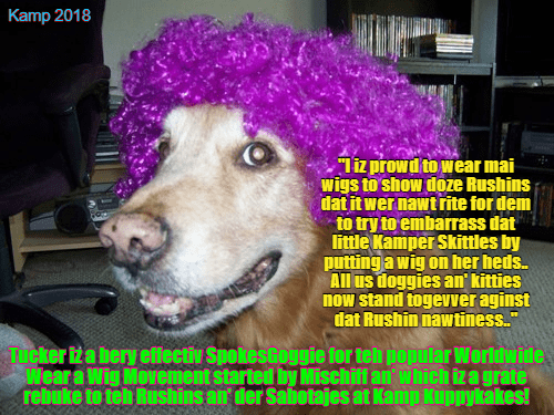 Cheezburger Image 9211800832