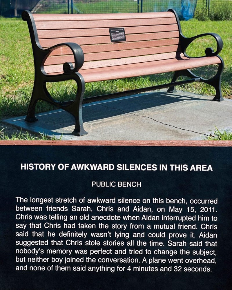 Furniture - HISTORY OF AWKWARD SILENCES IN THIS AREA PUBLIC BENCH The longest stretch of awkward silence on this bench, occurred between friends Sarah, Chris and Aidan, on May 15, 2011 Chris was telling an old anecdote when Aidan interrupted him to say that Chris had taken the story from a mutual friend. Chris said that he definitely wasn't lying and could prove it. Aidan suggested that Chris stole stories all the time. Sarah said that nobody's memory was perfect and tried to change the subject,