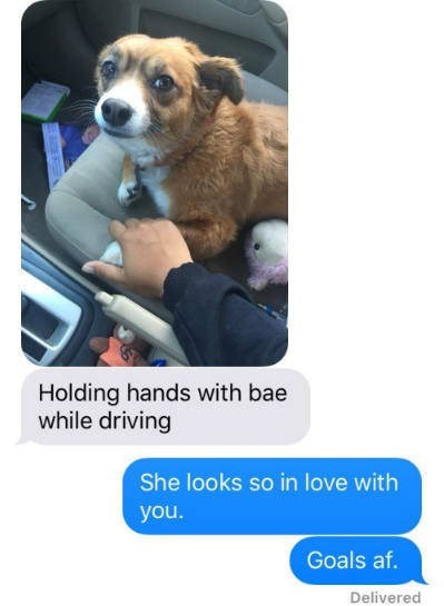 Dog - Holding hands with bae while driving She looks so in love with you. Goals af. Delivered