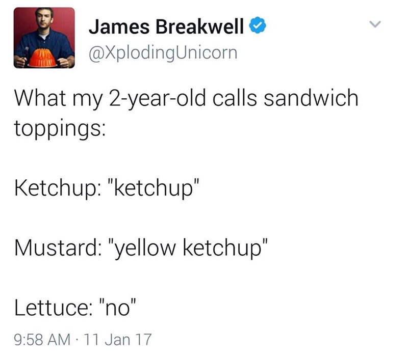 "funny dad - Text - James Breakwell @XplodingUnicorn What my 2-year-old calls sandwich toppings: Ketchup: ""ketchup"" Mustard: ""yellow ketchup"" Lettuce: ""no"" 9:58 AM 11 Jan 17"