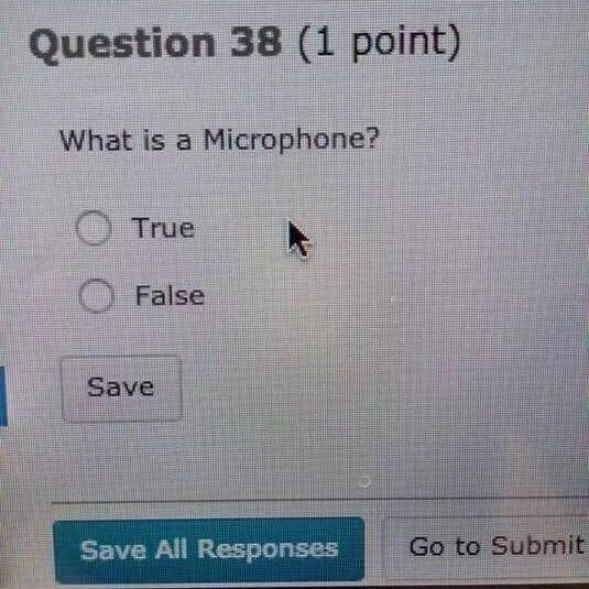 Text - Question 38 (1 point) What is a Microphone? True False Save Go to Submit Save All Responses