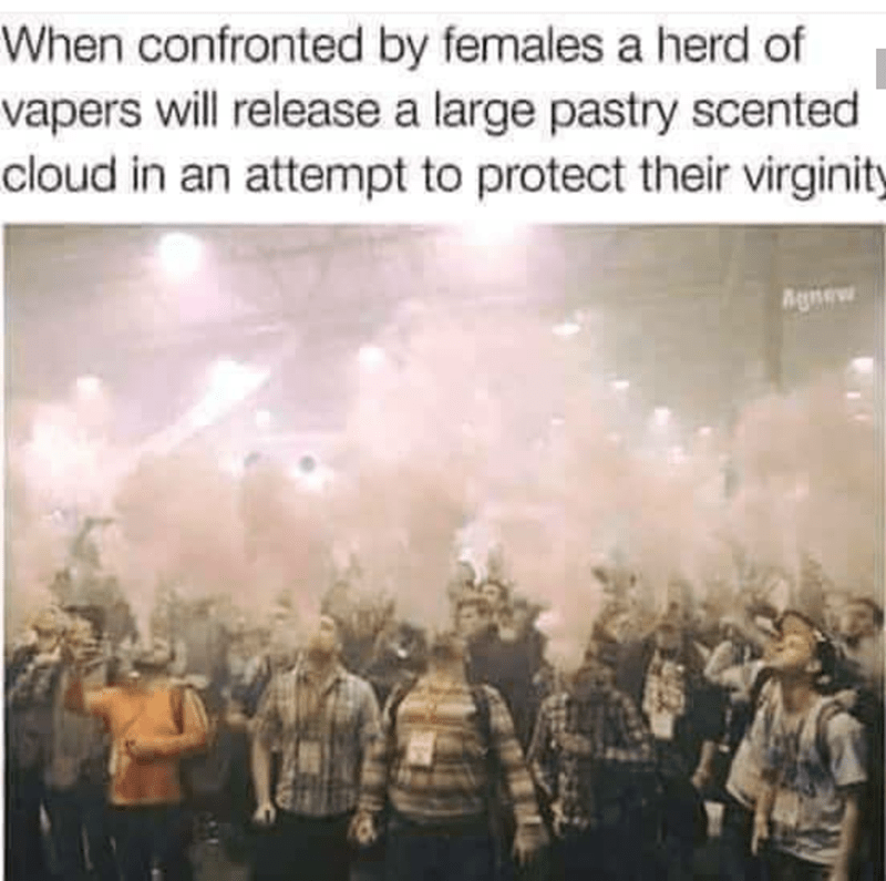 People - When confronted by females a herd of vapers will release a large pastry scented cloud in an attempt to protect their virginity Agnew