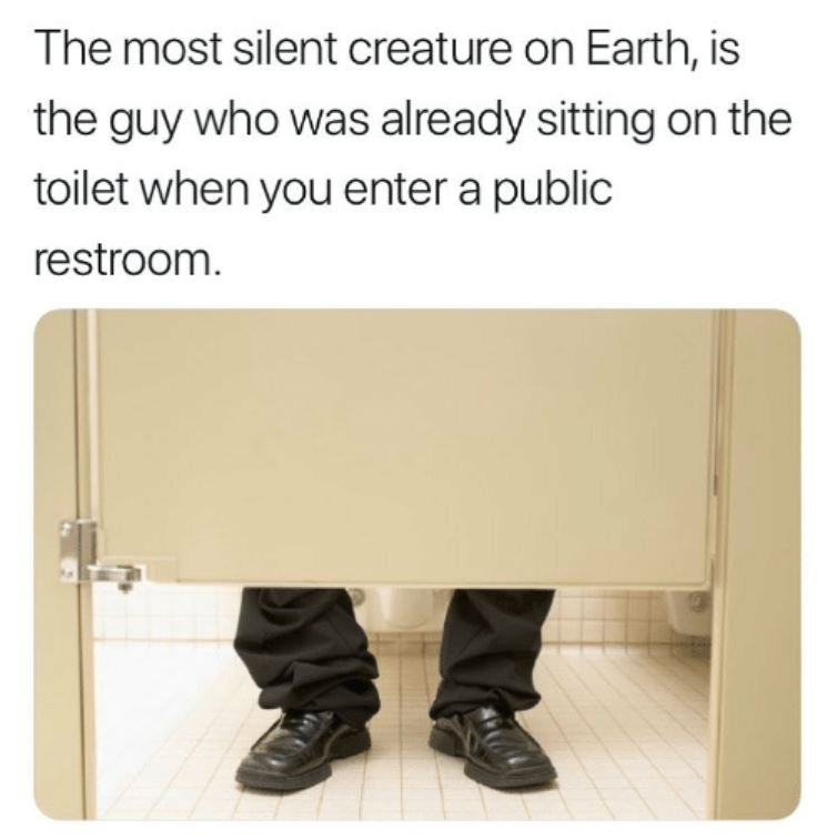 "Caption that reads, ""The most silent creature on Earth, is the guy who was already sitting on the toilet when you enter a public restroom"""