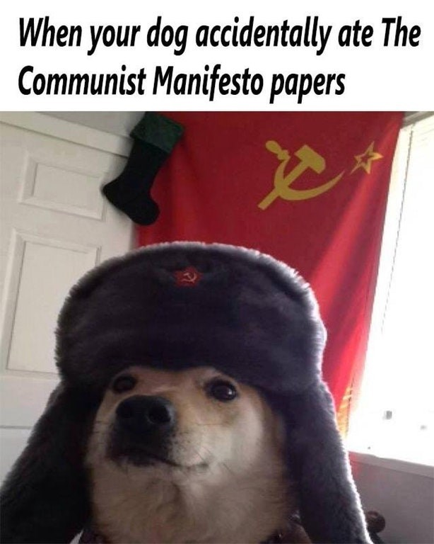 "Caption that reads, ""When your dog accidentally ate the Communist Manifesto papers"" above a pic of a dog wearing a Soviet hat in front of a Soviet Union flag"