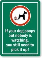 Signage - If your dog poops but nobody is watching, you still need to pick it up!